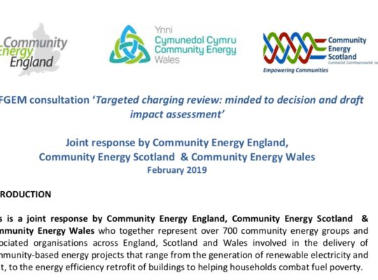 CEE, CES & CEW joint response to Targeted Charging Review